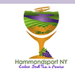 Coolest Small Town in America Hammondsport